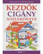 Kezdők cigány nyelvkönyve - Helen Davies ,  Máté Mihály