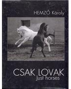 Csak lovak - Hemző Károly