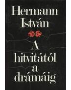 A hitvitától a drámáig - Hermann István