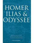 Illias und Odyssee - Homer