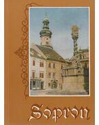 Sopron - Horváth Ferenc, Csatkai Endre, Becht Rezső, Friedrich Károly, Thier László
