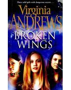 Broken Wings - ANDREWS, VIRGINIA