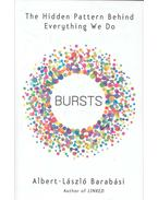 Bursts - The Hidden Pattern Behind Everything We Do - Barabási Albert László