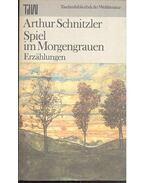 Spiel im Morgengrauen - Arthur Schnitzler
