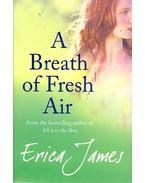 A Breath of Fresh Air - James, Erica