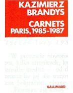 Carnets Paris, 1985-1987 - Brandys, Kazimierz