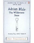 Adrian Mole: The Wilderness Years - Sue Townsend