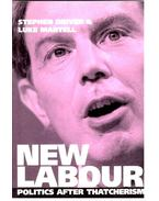 New Labour  - Politics after Thatcherism - DRIVER, STEPHEN