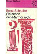 Sie sehen den Marmor nicht - Schnabel, Ernst
