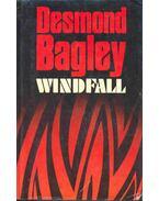 Windfall - Bagley, Desmond