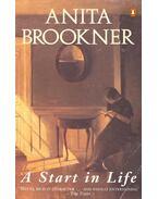 A Start in Life - Anita Brookner