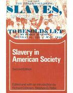 Slavery in American Society - BROWN, RICHARD D. - RABE, STEPHEN G. (editor)