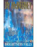 Brightness Falls - McInerney, Jay