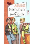 Schule, Frust und grosse Liebe - ZIMMERMANN – ZIMMEMANN