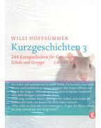 244 Kurzgeschichten für Gottendienst - HOFFSÜMMER, WILLI