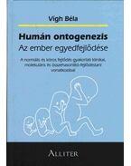 Humán ontogenezis - Dr. Vígh Béla