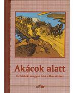 Akácok alatt - Hunyadi Csaba Zsolt