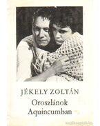 Oroszlánok Aquincumban - Jékely Zoltán