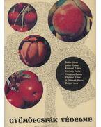 Gyümölcsfák védelme - Jenser Gábor