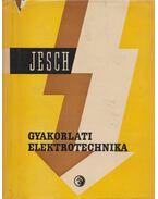 Gyakorlati elektronika - Jesch László