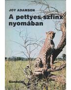 A pettyes szfinx nyomában - Joy Adamson