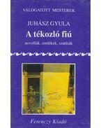 A tékozló fiú - Juhász Gyula