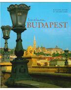 Szerelmem, Budapest - Kaiser Ottó, D. Szabó Ede