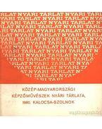 Közép-Magyarországi Képzőművészek Nyári Tárlata 1980 Kalocsa-Szolnok - Kaposvári Gyula
