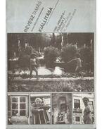 Révész Tamás kiállítása - Kardos G. György