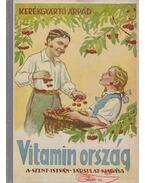 Vitaminország - Kerékgyártó Árpád
