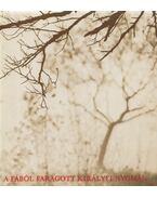 A fából faragott királyfi nyomán - Keresztury Dezső, Gink Károly