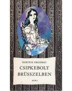 Csipkebolt Brüsszelben - Kertész Erzsébet