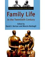 Family Life In the Twentieth Century - KERTZER, DAVID I, - BARBAGLI, MARZIO (ed)