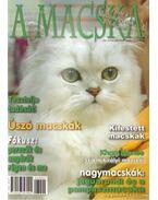 A Macska 2007. március-április (újság) - László Erika