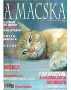 A Macska 2002. január-február (újság) - László Erika