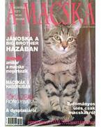 A Macska 2003. január-február (újság) - László Erika