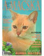 A Macska 2003. július-augusztus (újság) - László Erika