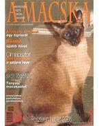 A Macska 2005. január-február (újság) - László Erika