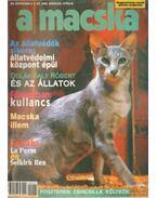 A Macska 2000. március-április (újság) - László Erika