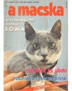 A Macska 1998. szeptember-október (újság) - László Erika