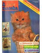 A Macska 1996. május (újság) - László Erika