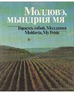 Moldávia, büszke vagyok rád! (orosz nyelvű) - Galperin, V. L.
