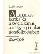A munkáskérdés és a szocializmu a magyar politikai gondolkodásban 1848-1906 - Schlett István