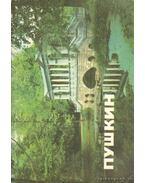 Puskin. Múzeumok és parkok (orosz nyelvű) - Hodaszevics, G. D. (összeáll)