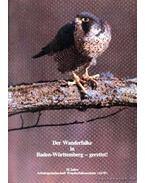 Der Wanderfalke in Baden-Württemberg - gerettet! (dedikált) - Több német szerző