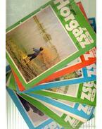 Magyar Horgász 1981. (hiányos) - Vigh József