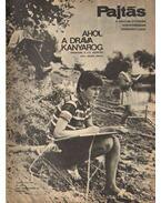 Pajtás 1969. szeptember 37. szám - Vasvári Ferenc (főszerk.)