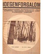 Idegenforgalom 1968-1969. évfolyamok (teljes) - Pap Miklós