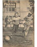 Pajtás 1972, XXVII. évfolyam június 7-december 27. (23-52. szám) - Vasvári Ferenc (főszerk.)