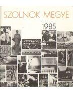 Szolnok megye 1985 - Szabó Mihály, Valkó Mihály